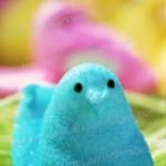 Marshmallow Peep