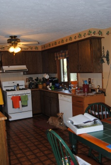 "The ""Old"" kitchen ..."